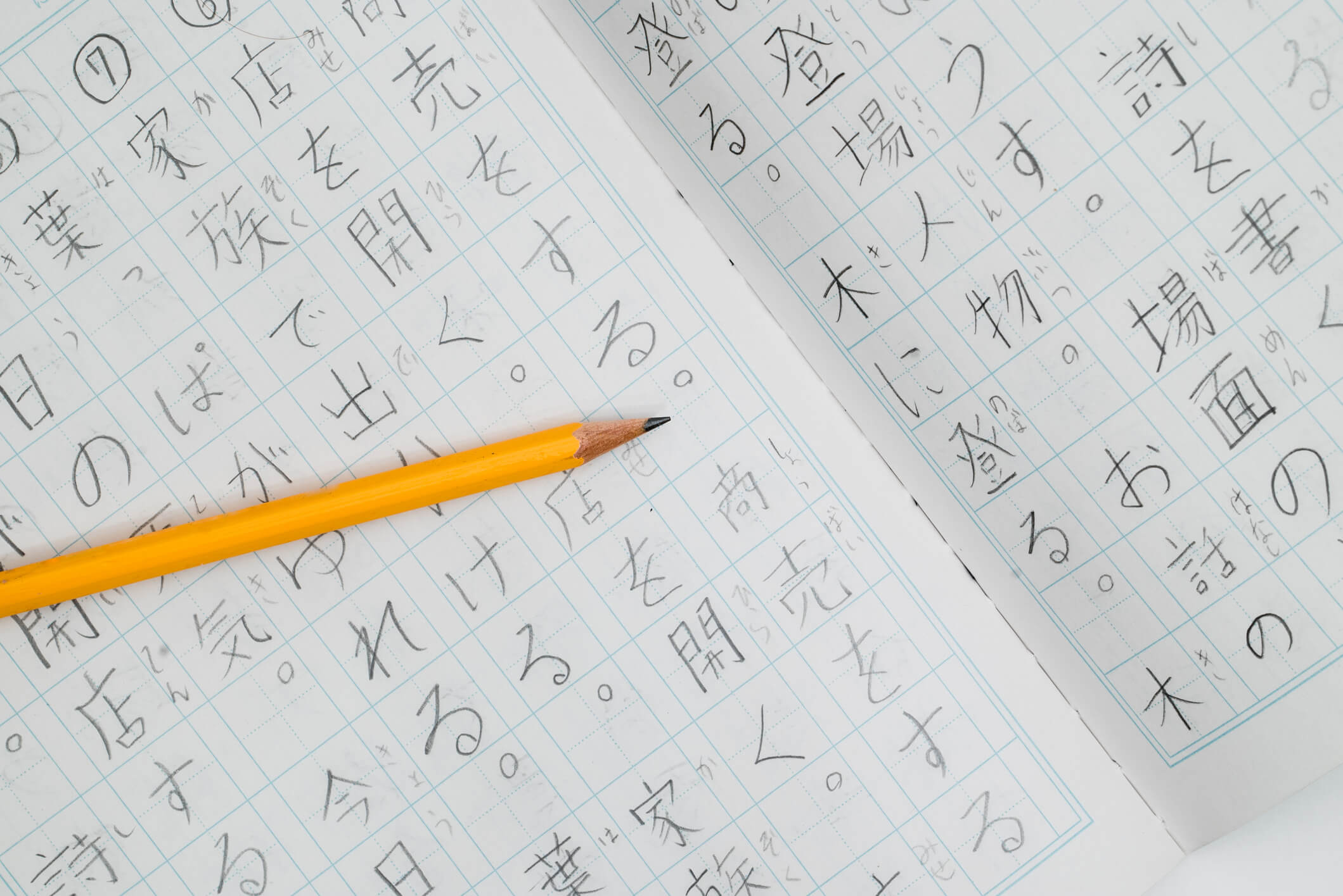 is it worth learning Japanese?